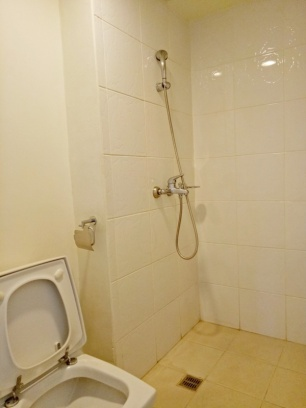 toilet and bath (pic 1)